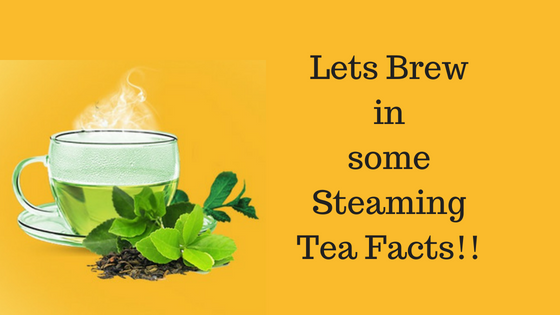 letz-brew-in-some-tea-facts